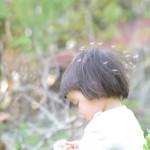 20130504西那須タンポポ