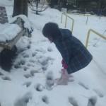 20140215雪