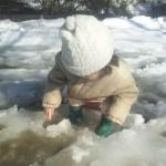 20140216雪たまり