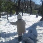 20140216雪